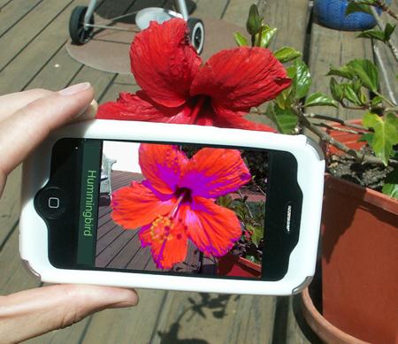 iphone_hummingbird_s.jpg